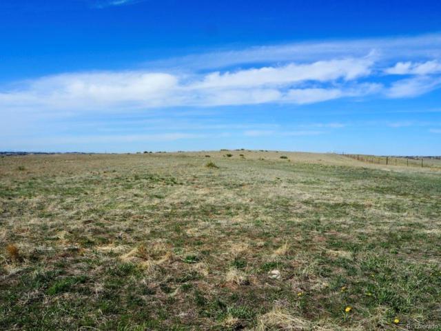 Ruralq, Parker, CO 80138 (#7617382) :: The Peak Properties Group