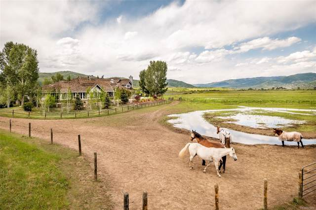 32750 County Road 14, Steamboat Springs, CO 80487 (MLS #7621703) :: The Sam Biller Home Team