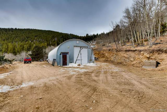 1294 Pewabic Mountain Road, Central City, CO 80427 (MLS #7625867) :: 8z Real Estate