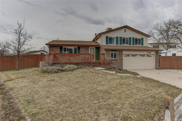 7397 Deframe Street, Arvada, CO 80005 (#7627163) :: Wisdom Real Estate