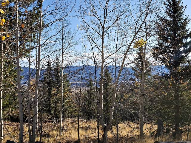 191 Cradle Board Court, Como, CO 80456 (MLS #7628259) :: 8z Real Estate