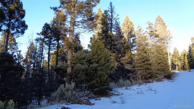 1069 Reed Lane, Fort Garland, CO 81133 (#7633663) :: milehimodern