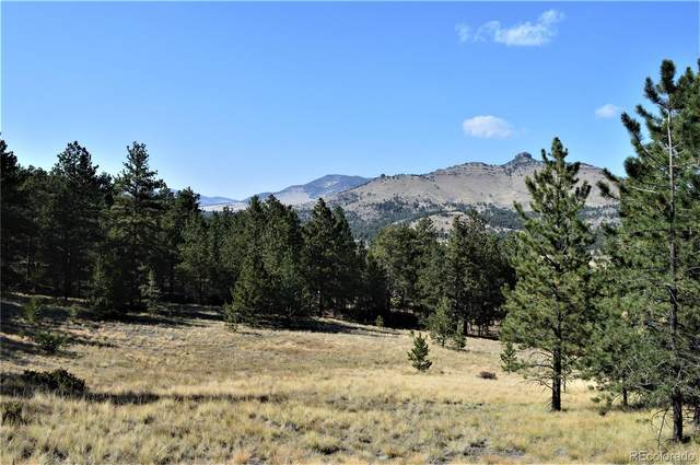9100 County Rd 102, Guffey, CO 80820 (#7641338) :: The DeGrood Team