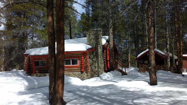 649 County Rd #21 #3, Leadville, CO 80461 (#7642127) :: Wisdom Real Estate