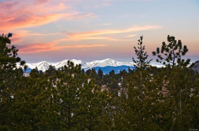 552 Mt Evans Road, Golden, CO 80401 (#7643755) :: The Galo Garrido Group