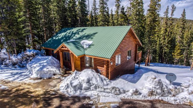 2053 Valley Of The Sun Drive, Fairplay, CO 80440 (#7644984) :: Mile High Luxury Real Estate