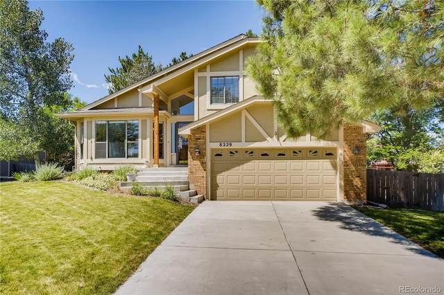 8229 S Steele Court, Centennial, CO 80122 (MLS #7645414) :: 8z Real Estate