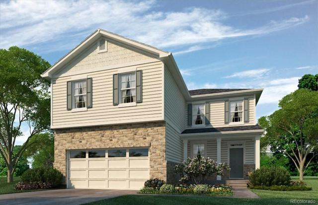 5919 High Timber Circle, Castle Rock, CO 80104 (#7645574) :: The DeGrood Team
