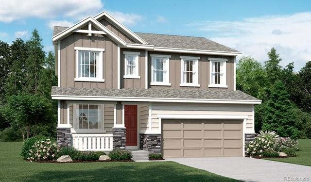 1072 White Leaf Circle, Castle Rock, CO 80108 (#7646554) :: The Griffith Home Team