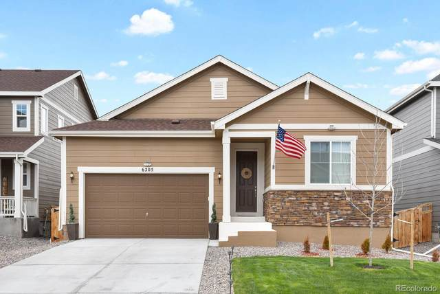 6205 Leilani Lane, Castle Rock, CO 80108 (#7647632) :: Wisdom Real Estate