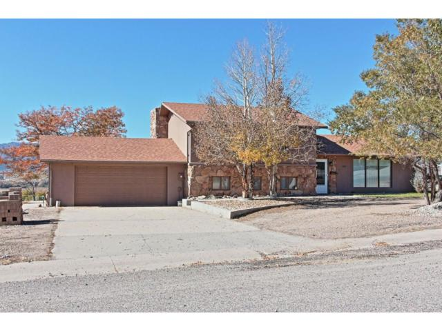 9375 County Road 178A, Salida, CO 81201 (#7650373) :: Ford and Associates