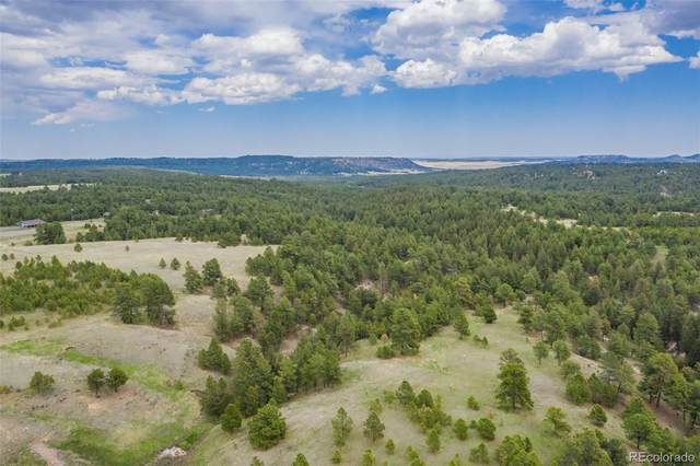 0 Saddle Blanket Lane, Peyton, CO 80831 (#7654719) :: Briggs American Properties
