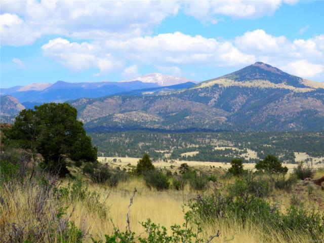 1537 Apache Trail, Florissant, CO 80816 (MLS #7655182) :: 8z Real Estate