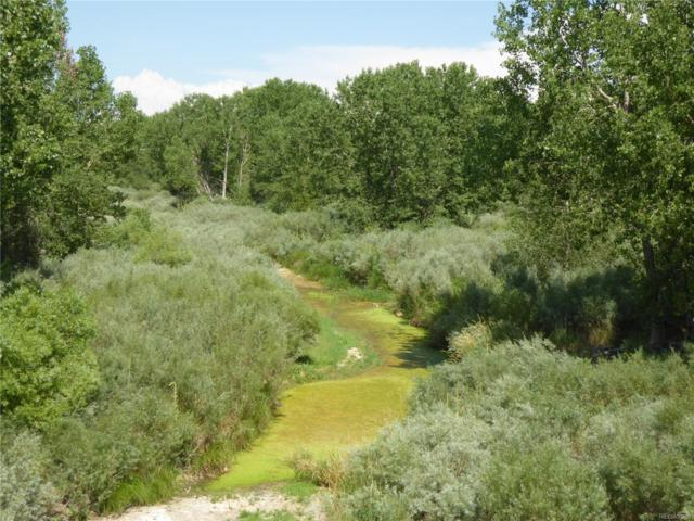 4790 County Road X, Weldona, CO 80653 (#7657599) :: The Galo Garrido Group
