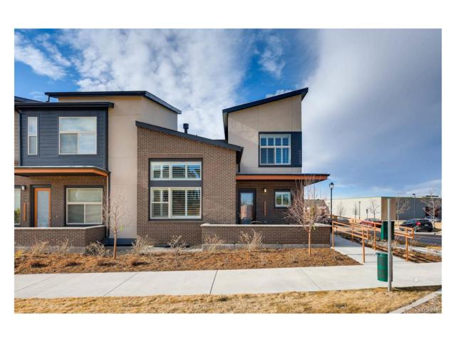 10062 Belvedere Circle, Lone Tree, CO 80124 (#7658297) :: Structure CO Group