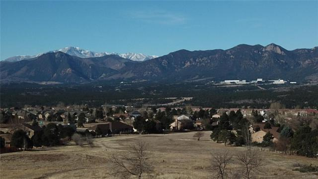 375 Mission Hill Way, Colorado Springs, CO 80921 (#7659507) :: The DeGrood Team