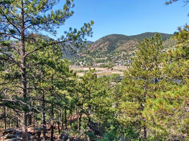 Oakdale Terrace, Palmer Lake, CO 80133 (#7660905) :: The Scott Futa Home Team