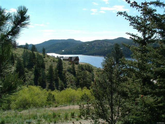 299 E 5th Street, Nederland, CO 80466 (#7660956) :: Bring Home Denver