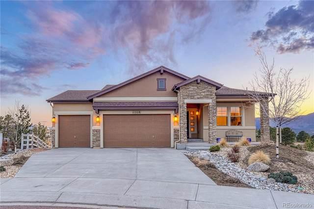 11528 Funny Cide Court, Colorado Springs, CO 80921 (MLS #7661816) :: Wheelhouse Realty