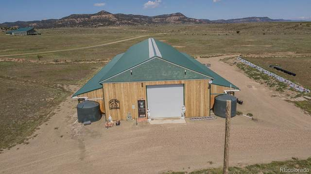 20000 Walking Stick Road, Trinidad, CO 81082 (MLS #7662086) :: Bliss Realty Group
