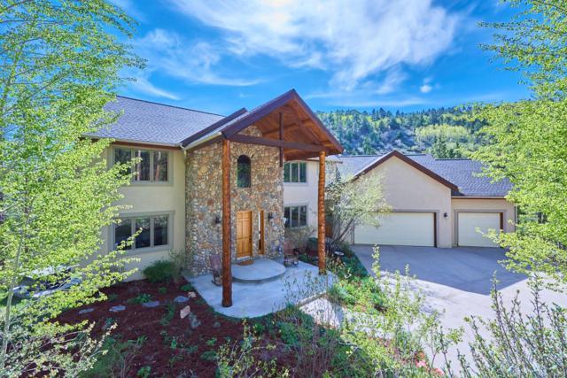 30 Carroll Court, Black Hawk, CO 80422 (#7663344) :: House Hunters Colorado