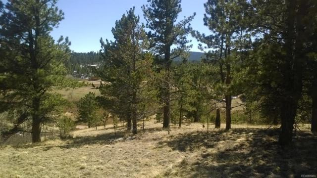 Elk Creek Drive, Bailey, CO 80421 (#7665801) :: The DeGrood Team
