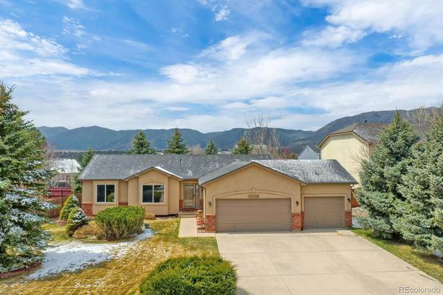 17215 Buffalo Valley Path, Monument, CO 80132 (#7666012) :: Finch & Gable Real Estate Co.