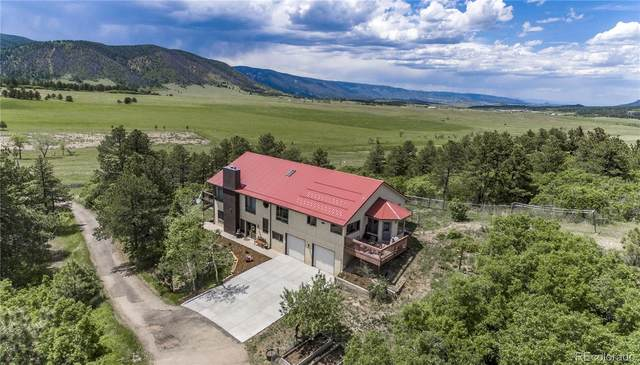 1141 W Noe Road, Larkspur, CO 80118 (#7667316) :: The Harling Team @ Homesmart Realty Group