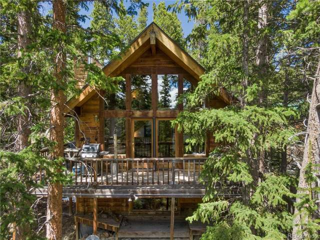 119 Brook Drive, Idaho Springs, CO 80452 (#7672221) :: Berkshire Hathaway Elevated Living Real Estate