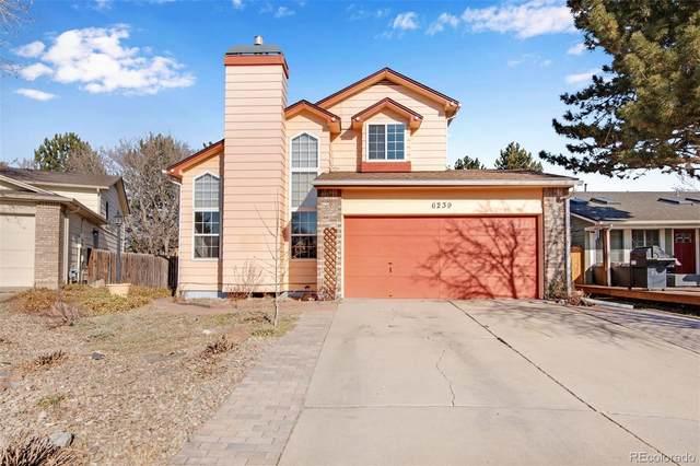 6239 Zenobia Court, Arvada, CO 80003 (MLS #7673360) :: Kittle Real Estate