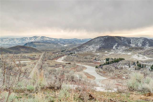 480 Ranch Road, Hayden, CO 81639 (#7674716) :: Bring Home Denver with Keller Williams Downtown Realty LLC