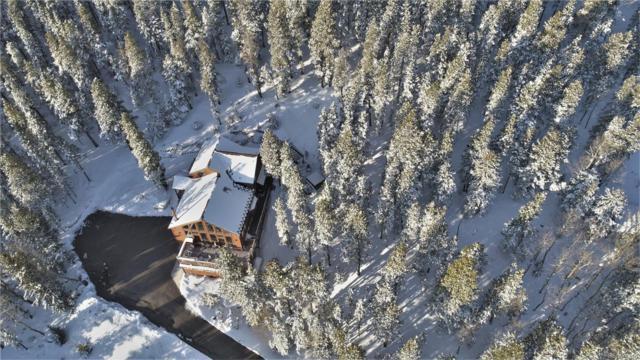 31428 Conifer Mountain Drive, Conifer, CO 80433 (#7674758) :: RE/MAX Professionals