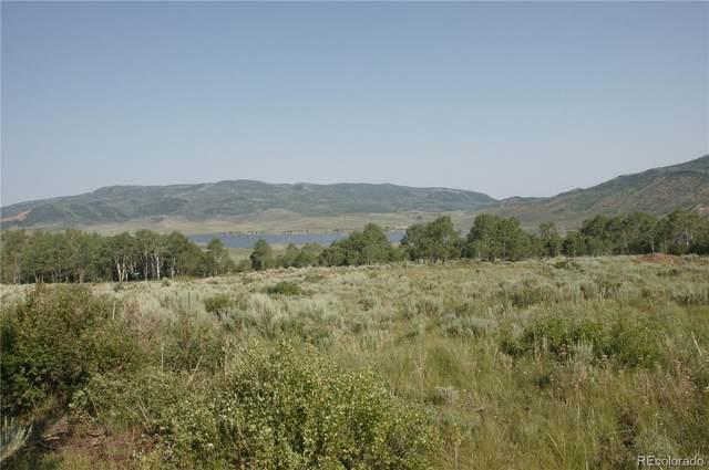 31600 & 31620 Apache Trail, Oak Creek, CO 80467 (#7676886) :: The Artisan Group at Keller Williams Premier Realty