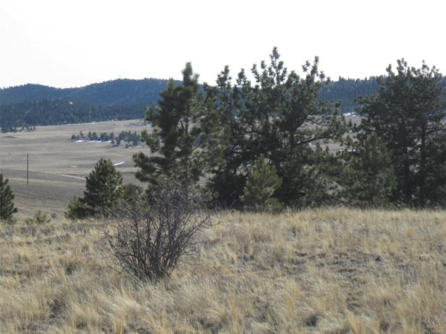 26 Stone Way, Hartsel, CO 80449 (MLS #7680086) :: 8z Real Estate