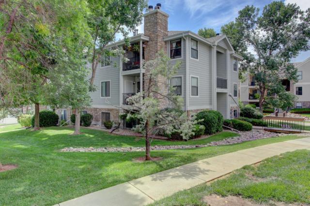 6765 S Field Street 7-713, Littleton, CO 80128 (MLS #7682387) :: 8z Real Estate