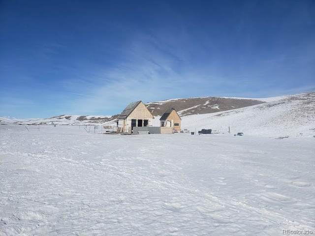 1340 Delaware Road, Hartsel, CO 80449 (MLS #7683142) :: Kittle Real Estate