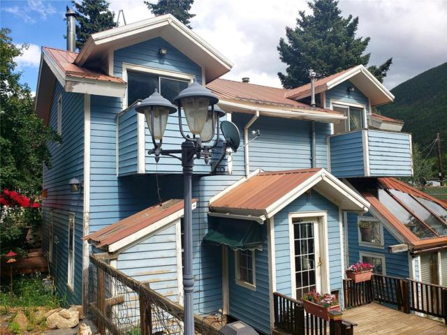 840 Willis Street, Silver Plume, CO 80476 (#7683317) :: 5281 Exclusive Homes Realty