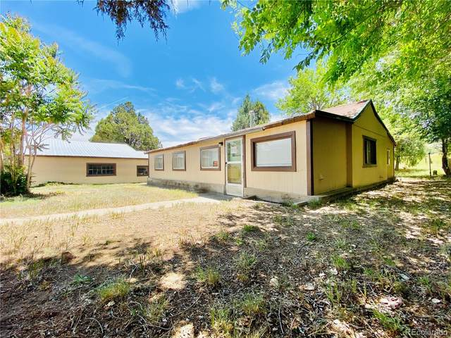 1200 County Road 4, Howard, CO 81201 (MLS #7685129) :: 8z Real Estate