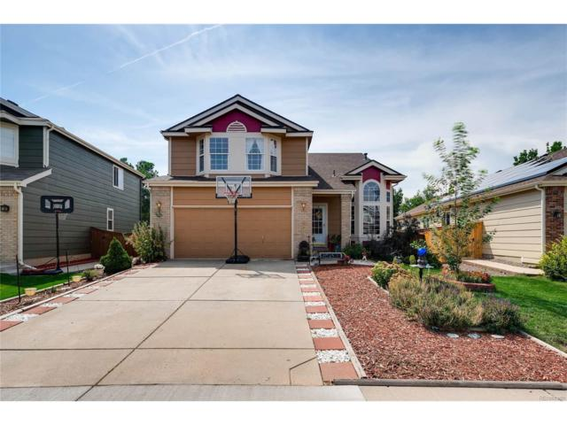 9523 High Cliffe Street, Highlands Ranch, CO 80129 (MLS #7685477) :: 8z Real Estate