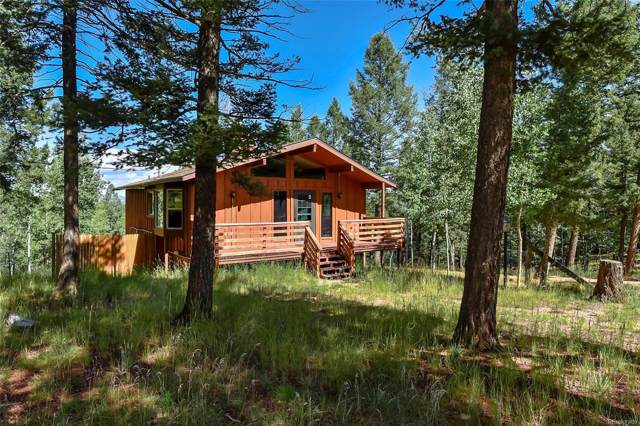 1307 County Road 512, Divide, CO 80814 (MLS #7691240) :: 8z Real Estate