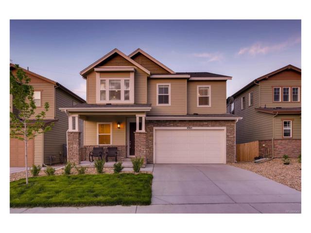 4065 Trail Stone Circle, Castle Rock, CO 80108 (MLS #7691859) :: 8z Real Estate
