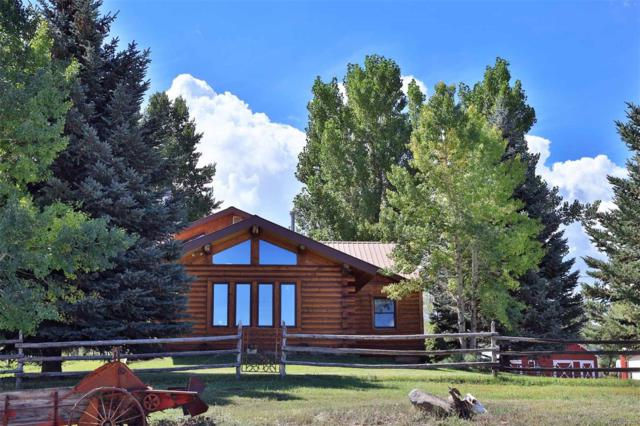 19561 Kimball Creek Road, Collbran, CO 81624 (#7695832) :: The Peak Properties Group