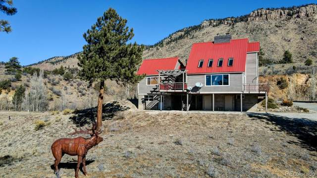 29355 County Road 305, Buena Vista, CO 81211 (#7702543) :: Colorado Home Finder Realty