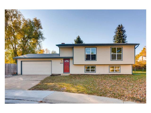 9206 Holland Street, Westminster, CO 80021 (#7704111) :: The Thayer Group