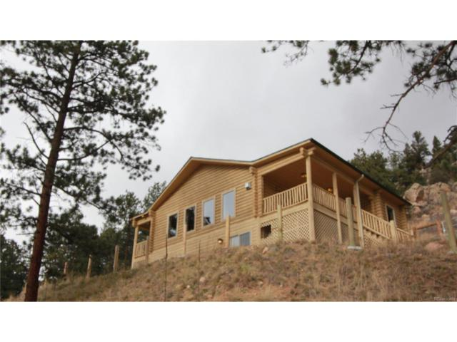 603 Old State Road, Bailey, CO 80421 (MLS #7704566) :: 8z Real Estate
