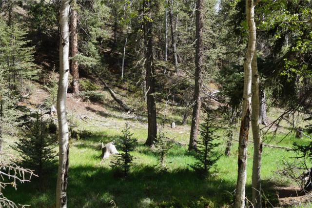 1210 E Bison Creek Trail, Divide, CO 80814 (#7705680) :: The DeGrood Team