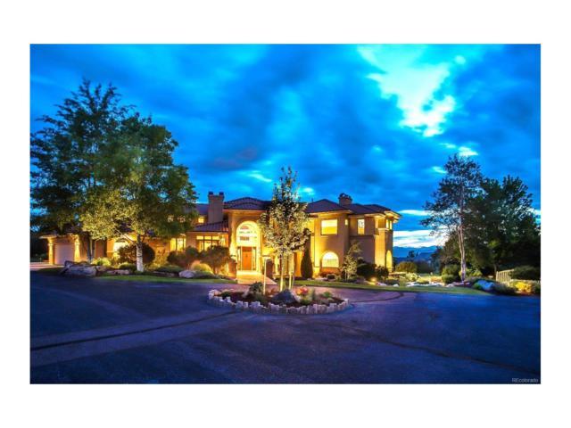 2 Black Fox Lane, Greenwood Village, CO 80111 (MLS #7706812) :: 8z Real Estate