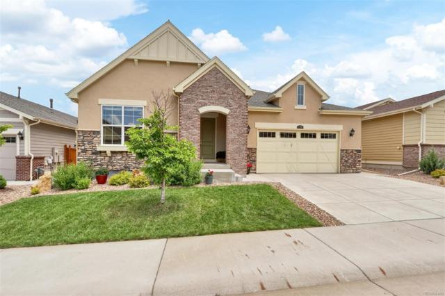 2798 Red Bird Trail, Castle Rock, CO 80108 (#7709928) :: The HomeSmiths Team - Keller Williams
