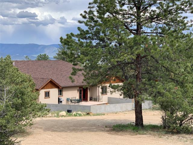 30280 Valley View Drive, Buena Vista, CO 81211 (#7715387) :: The DeGrood Team