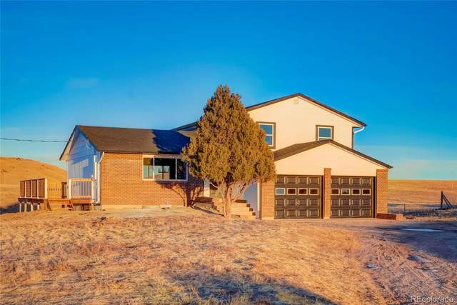 12658 Mesa View Road, Larkspur, CO 80118 (#7719208) :: Venterra Real Estate LLC